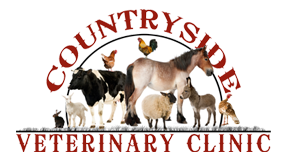 Countryside Veterinary Clinic, LLC