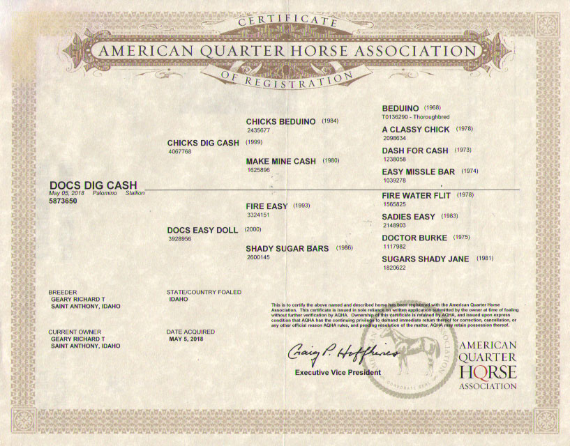 AQHA papers